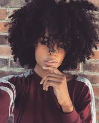 how to grow afro hair on the top while shaving the sides best 25 curly afro ideas on pinterest curly fro growing afro