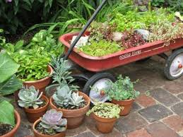 Potted Plants For Patio Clever Plant Container Ideas The Micro Gardener