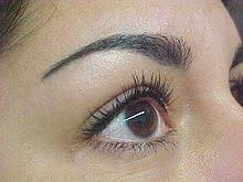 permanent makeup wikipedia