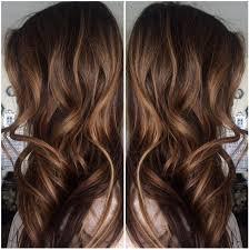 ecaille hair isabella hair salon new hair trend ecaille tortoise shell hair