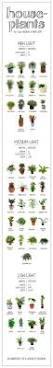 142 best terrariums images on pinterest 5th grades dollar