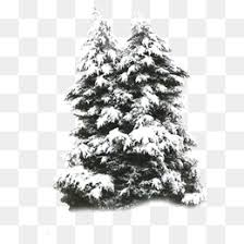 snow trees snowy material vector snowy snow png and vector for