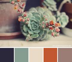 kitchen wall tile ideas bloomingcactus color palette blooming cactus cacti beautiful images and german