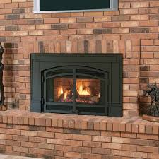 interior design natural gas fireplace insert with blower natural