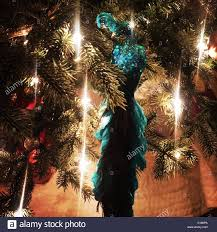 teal cockatiel ornament on tree stock photo royalty free