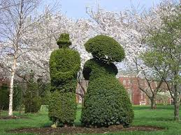 Topiaries Plants - 27 best topiary images on pinterest topiary plants topiaries