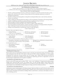 Vp Engineer Resume Resume Objective Examples Call Center Frizzigame Objective For