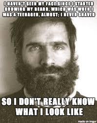 Bearded Guy Meme - as a bearded guy meme on imgur