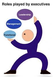 functional executive the functional management and leadership roles of an executive
