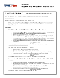 Government Job Resume by Sample Resume Of Usa Examples Of Resumes Professional Federal