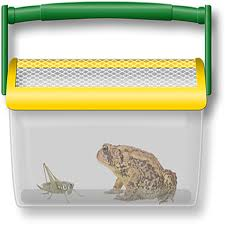 amazon com backyard safari critter shack toys u0026 games