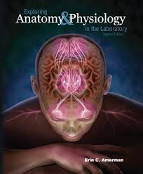 Answer Key For Anatomy And Physiology Lab Manual Exploring Anatomy U0026 Physiology In The Laboratory 2nd Edition