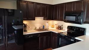 Wood Stained Cabinets How To Gel Stain Cabinets Idea Digezt