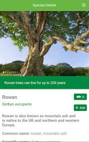 tree id trees android apps on play