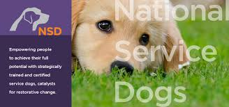 certified service dogs for ptsd national service dogs