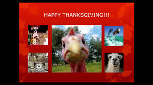 thanksgiving song sandler 1000 images about thanksgiving on pinterest happy thanksgiving