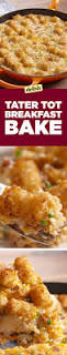 check out tater tot breakfast bake it u0027s so easy to make