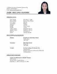 Professional Cv Template What Is Curriculum Vitae How To Write Cv Template What