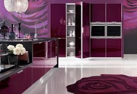 purple kitchen design red and purple kitchen decor kitchen and decor