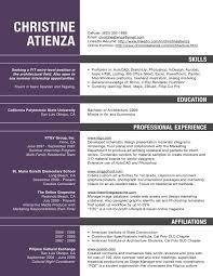 Curriculum Vitae Sample Format Thesis by Architect Curriculum Vitae Examples Virtren Com