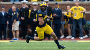 how i became a michigan man by jake
