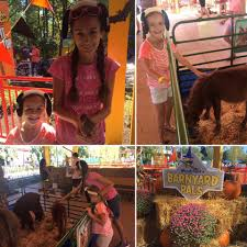 halloween fun for all ages at kings dominion