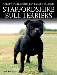 american pitbull terrier book a handy comparison all of these dogs and american bulldogs get