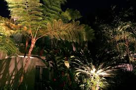 paradise outdoor lighting replacement parts lighting texas palms trees creates a paradise in your evening