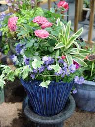 missouri native plant nursery colorful containers for sun and shade missouri gardener enewsletter