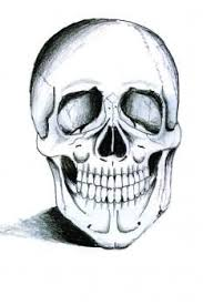 how to draw a skeleton