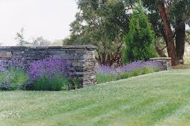 Stone Cladding For Garden Walls by Kanmantoo Bluestone Walling Stone