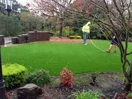 Florida Backyard Landscaping Ideas by Synthetic Grass Tildenville Florida Design Ideas Backyard