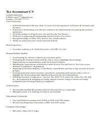 33 accountant resume samples