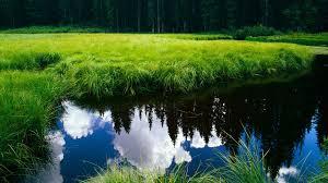 Beautiful Landscape Photos by 1080p Hd Image Nature Pixelstalk Net