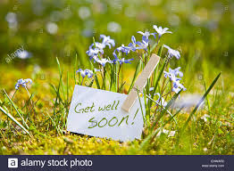Get Well Soon Flowers Get Well Soon With Spring Flowers Stock Photo Royalty Free Image