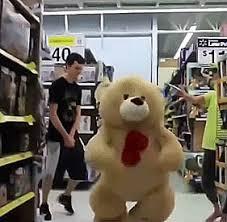 Meme Teddy Bear - put me like teddy bear the porcupine finds a christmas treat