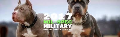 american pitbull terrier qualities news u2013 tagged