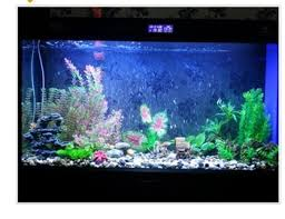 cheap aquarium plants find aquarium plants deals on line at