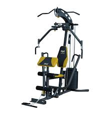 Home Gym by Everlast Elite Home Gym Black Yellow Lowest Prices U0026 Specials