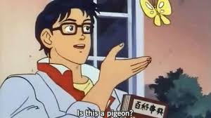 Meme Blogs - is this a pigeon a 2011 meme reincarnated in 2018 bbc news