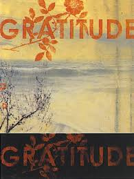 the cultivation of gratitude shalom rav
