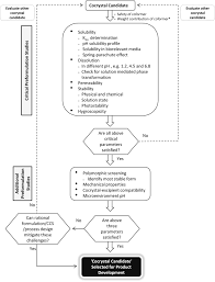 The Interplay Of Physical And Challenges In Translational Development Of Pharmaceutical
