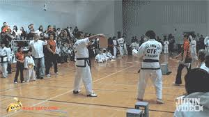 imagenes gif karate karate chop fails in convenient gif form holytaco