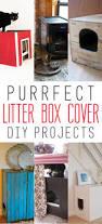 best 25 diy litter box cover ideas on pinterest litter box