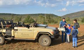 Safari With Us Madikwe Safaris Luxury South African Adventure