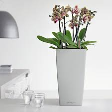 Indoor Planter Pots by Office Planters U0026 Modern Indoor Planters Planters Unlimited