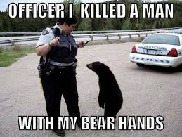 Funny Bear Memes - funny bear pictures with captions saboteur365