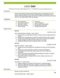 Marketing Resume Sample Resume Marketing Director