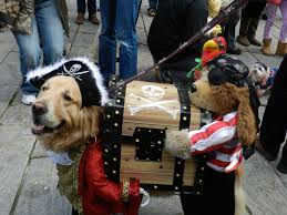 more halloween pet parades with more prizes the latest