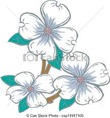 dogwood flowers dogwood flowers flowering dogwood vector clipart search